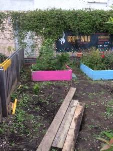 Garden Group @ North Edinburgh Arts garden | Edinburgh | Scotland | United Kingdom